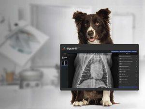 دستگاه رلدیولوژی دامپزشکی