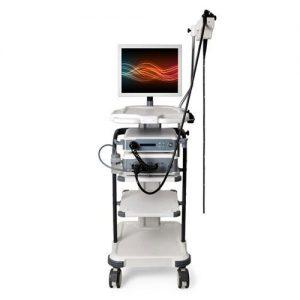 آندوسکوپی دیجیتال دامپزشکی